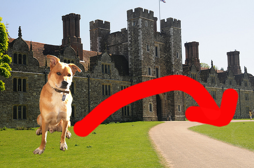 Theo-poos-at-knole---10-06-2013