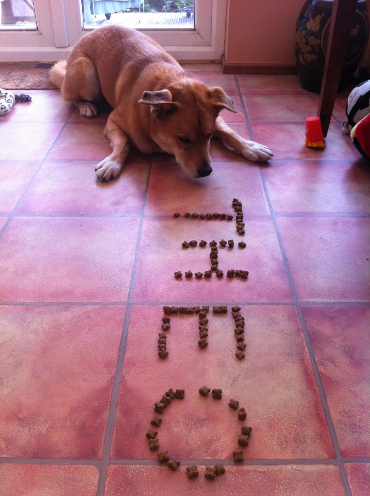 theo name in biscuits